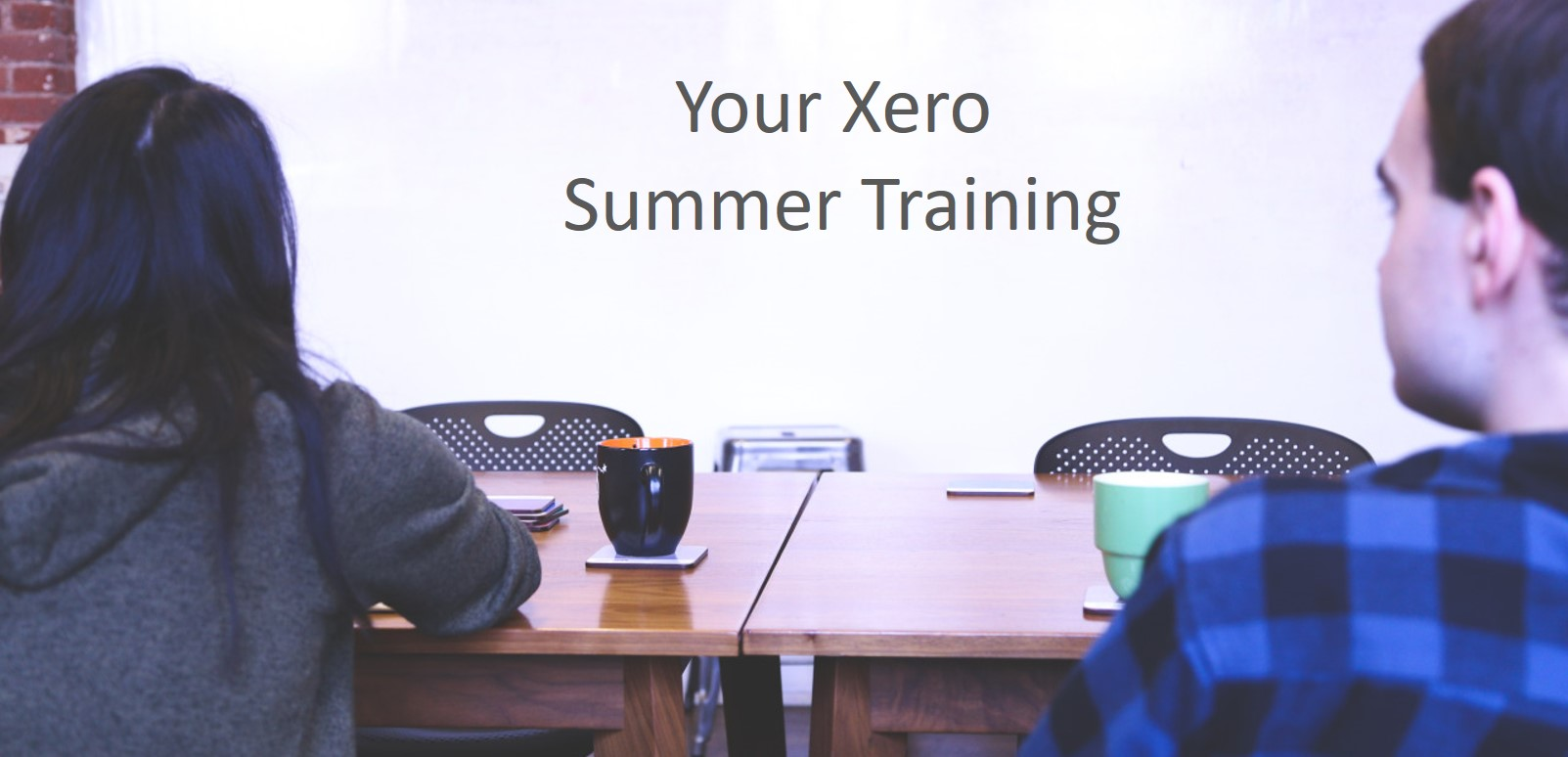 Xero Summer Training